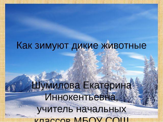 Как зимуют дикие животные Шумилова Екатерина Иннокентьевна, учитель начальных...
