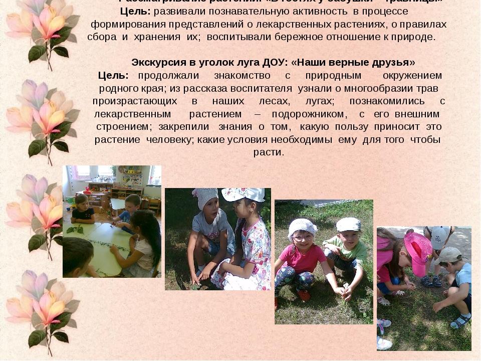 Рассматривание растений: «В гостях у бабушки – травницы» Цель: развивали по...