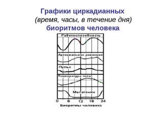 Графики циркадианных (время, часы, в течение дня) биоритмов человека