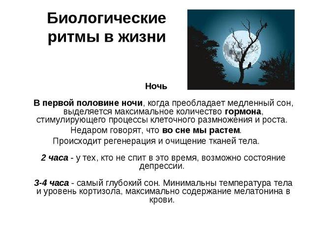 Биологические ритмы в жизни Ночь В первой половине ночи, когда преобладает м...
