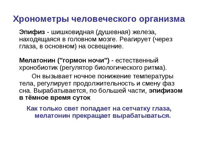 Хронометры человеческого организма Эпифиз- шишковидная (душевная) железа, н...