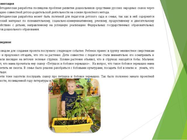 Аннотация Методическая разработка посвящена проблеме развития дошкольников ср...