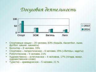 Досуговая деятельность Спортивные секции – 20 человек, 83% (борьба, баскетбол