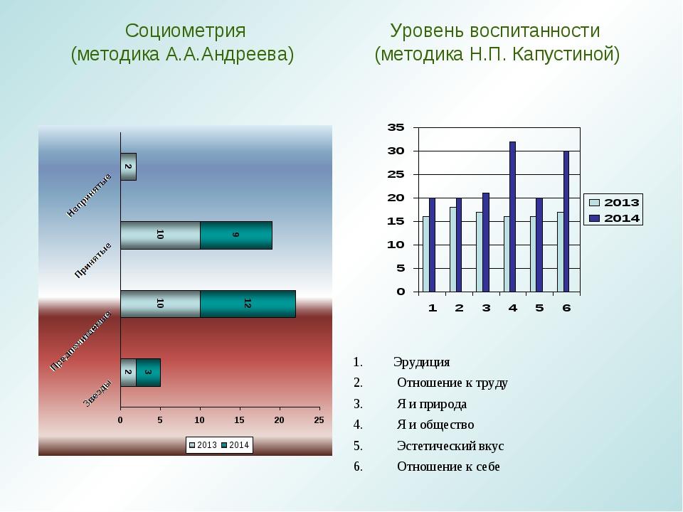 Социометрия (методика А.А.Андреева) Уровень воспитанности (методикаН.П.Капу...