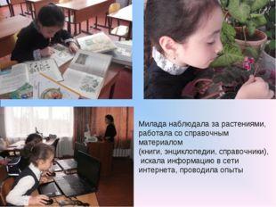 Милада наблюдала за растениями, работала со справочным материалом (книги, энц