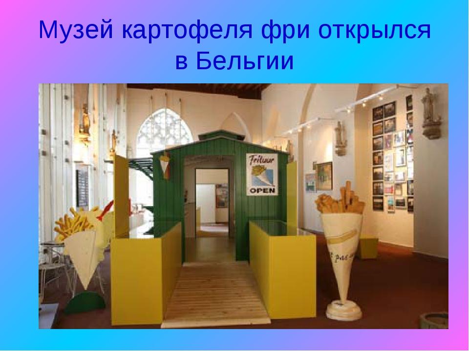 Музей картофеля фри открылся в Бельгии