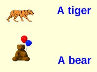 A tiger A bear