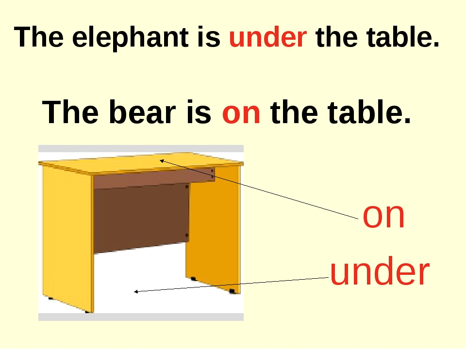 The elephant is under the table. The bear is on the table. on under