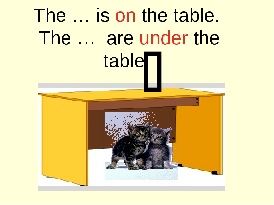 The … is on the table. The … are under the table. 