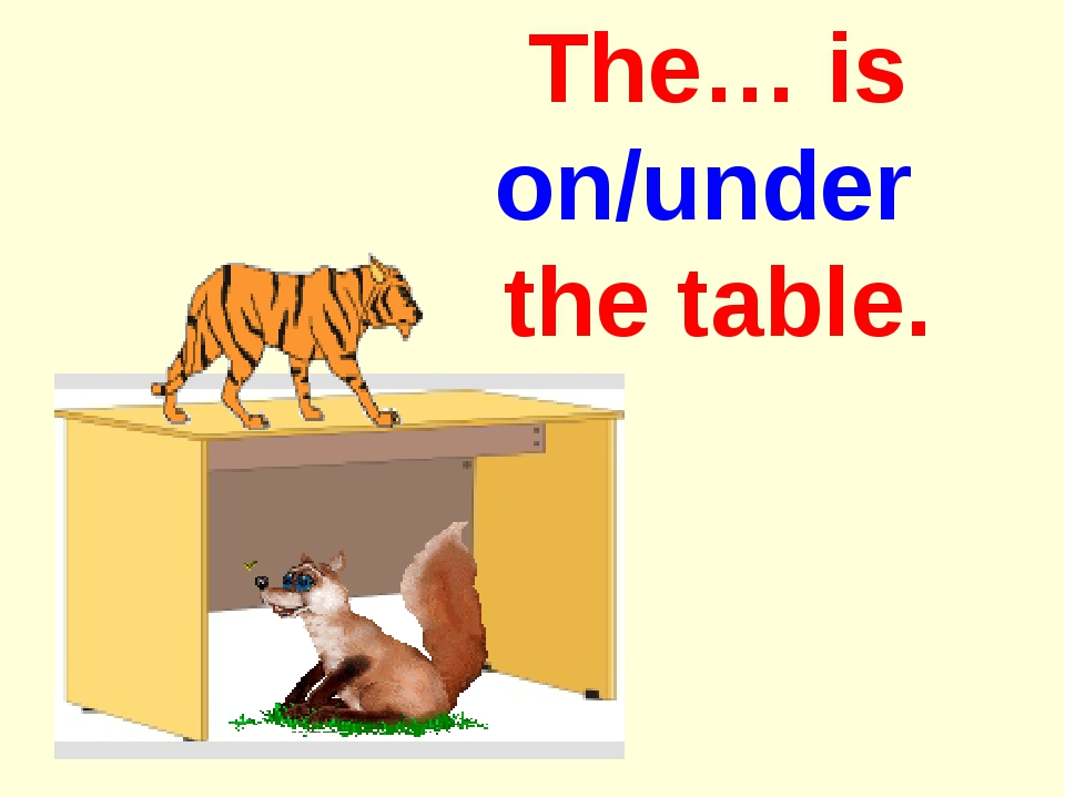 The… is on/under the table.