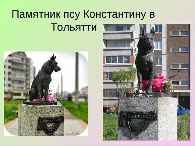Памятник псу Константину в Тольятти