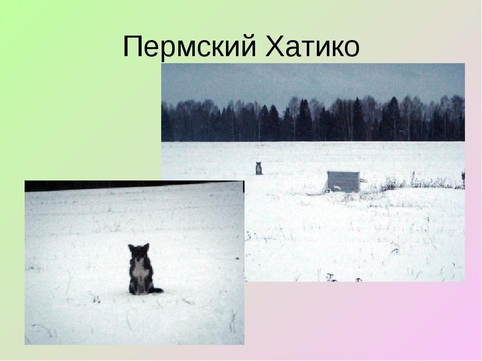 Пермский Хатико