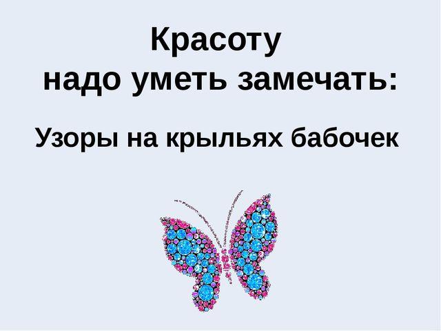 Узоры на крыльях бабочек Красоту надо уметь замечать: