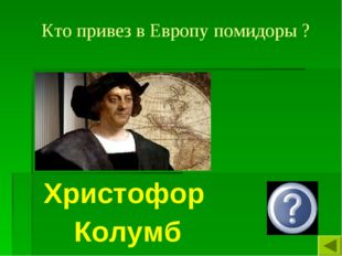 Кто привез в Европу помидоры ? Христофор Колумб