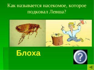 Как называется насекомое, которое подковал Левша? Блоха