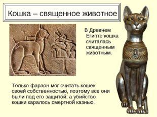 Кошка – священное животное Только фараон мог считать кошек своей собственнос