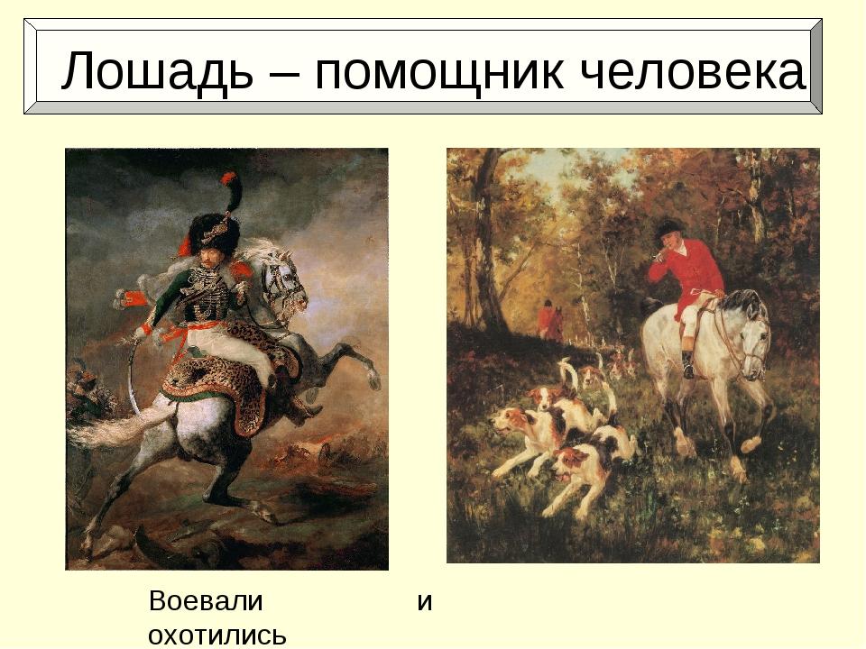 Лошадь – помощник человека Воевали и охотились