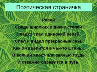 Поэтическая страничка Репей Средь широких и диких степей Сладко спал одинокий