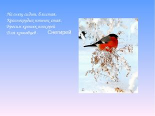 На снегу сидит, блистая, Красногрудых птичек стая. Бросим крошек поскорей Для