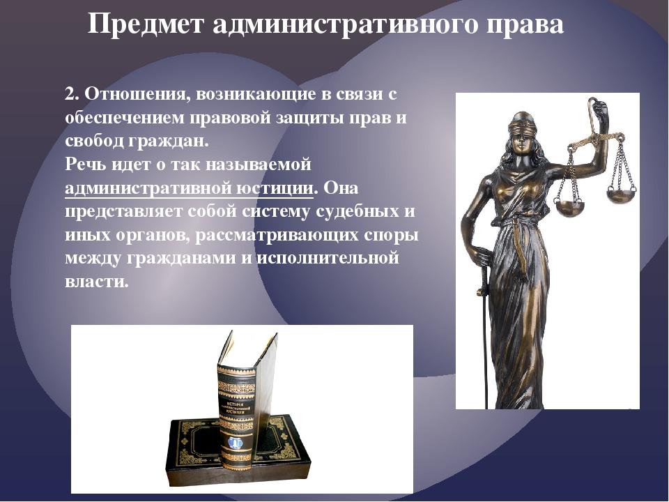 2. Отношения, возникающие в связи с обеспечением правовой защиты прав и свобо...