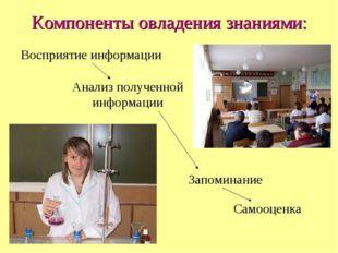 Компоненты овладения знаниями: Восприятие информации Анализ полученной информ