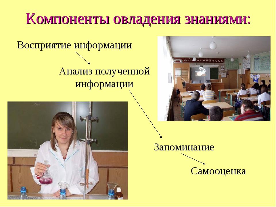 Компоненты овладения знаниями: Восприятие информации Анализ полученной информ...