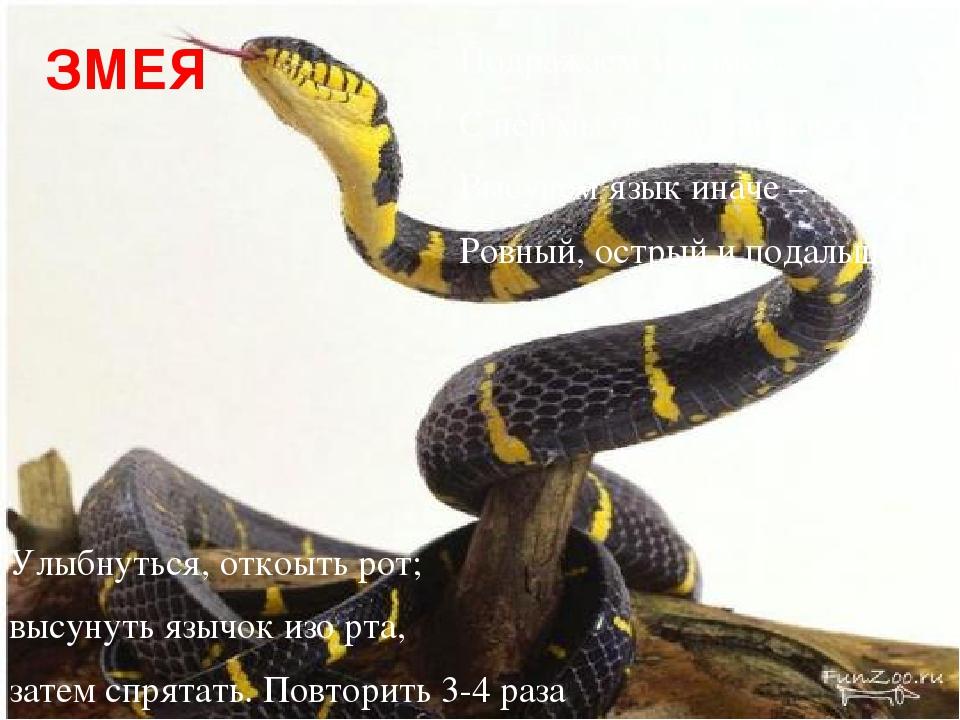 ЗМЕЯ Подражаем мы змее, С ней мы будем наравне: Высунем язык иначе – Ровный,...
