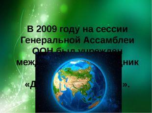 В 2009 годуна сессии Генеральной Ассамблеи ООН был учрежден международный пр