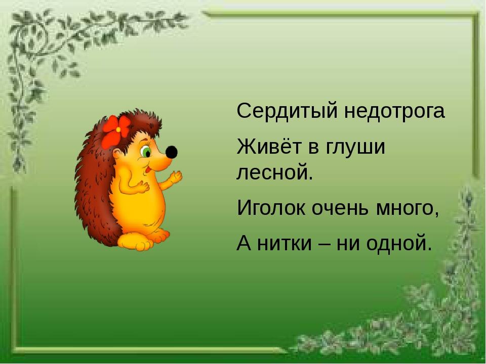 Сердитый недотрога Живёт в глуши лесной. Иголок очень много, А нитки – ни од...