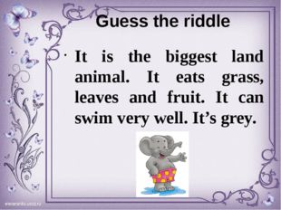 Guess the riddle It is the biggest land animal. It eats grass, leaves and fru