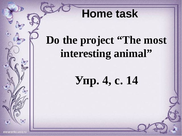 """Home task Do the project """"The most interesting animal"""" Упр. 4, с. 14"""