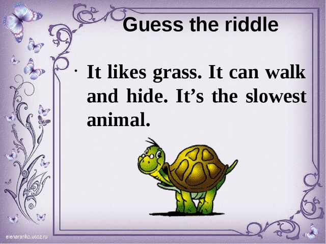 Guess the riddle It likes grass. It can walk and hide. It's the slowest animal.