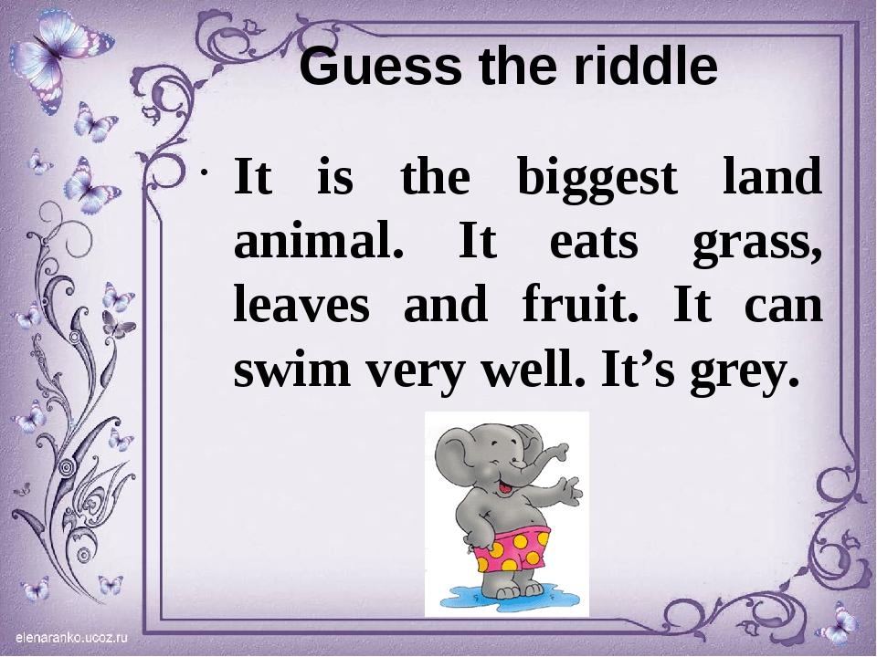 Guess the riddle It is the biggest land animal. It eats grass, leaves and fru...