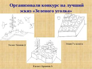 Организовали конкурс на лучший эскиз «Зеленого уголка» 9 класс Тихонов Д 8 к
