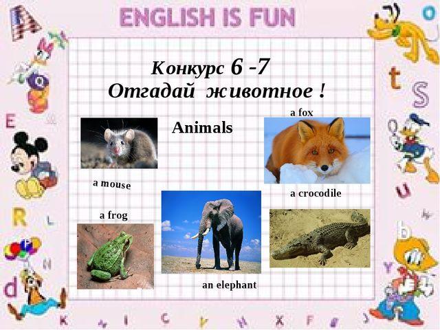 Конкурс 6 -7 Отгадай животное ! a mouse a fox a frog a crocodile Animals an e...