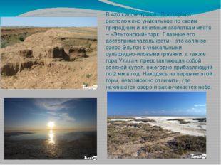В 420 километрах от Волгограда расположено уникальное по своим природным и ле