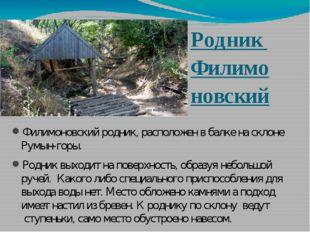 Родник Филимо новский Филимоновский родник, расположен в балке на склоне Румы