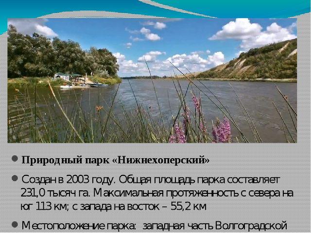 Природный парк «Нижнехоперский» Создан в 2003 году. Общая площадь парка сост...
