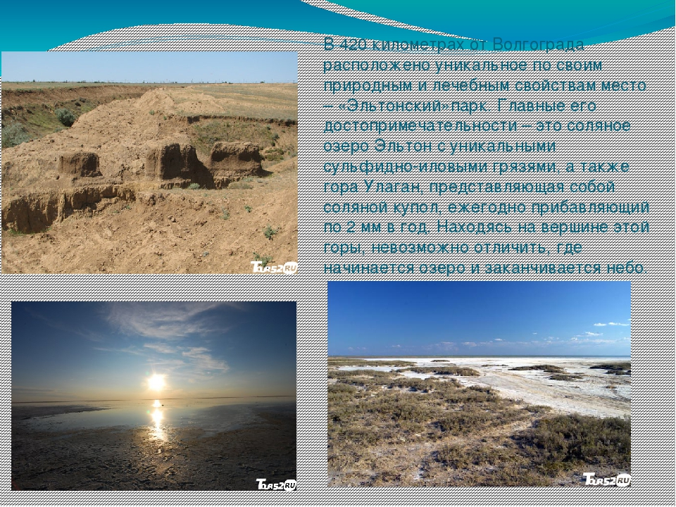В 420 километрах от Волгограда расположено уникальное по своим природным и ле...