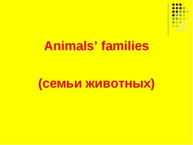 Animals' families (семьи животных)