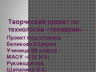 Творческий проект по технологии «топиарий» Проект подготовила Беликова Валери