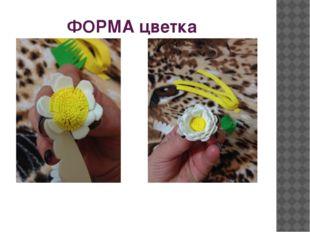 ФОРМА цветка
