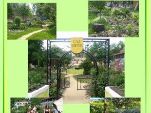 The garden of Flowers