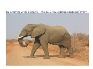 На девятом месте в списке - слоны, места обитания которых будут также сокращ