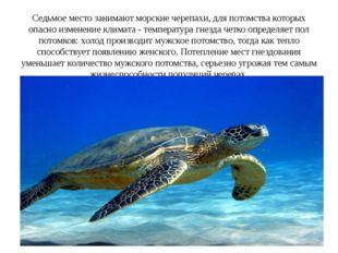 Седьмое место занимают морские черепахи, для потомства которых опасно изменен