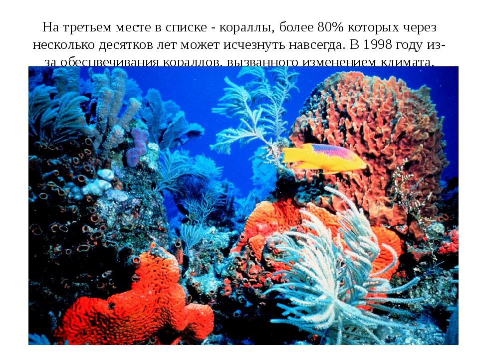 На третьем месте в списке - кораллы, более 80% которых через несколько десятк...
