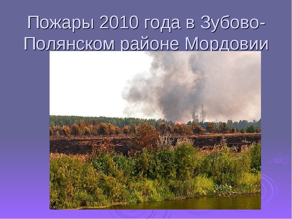 Пожары 2010 года в Зубово-Полянском районе Мордовии