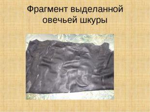 Фрагмент выделанной овечьей шкуры