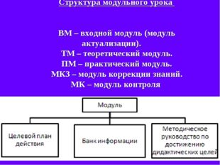 Структура модульного урока ВМ – входной модуль (модуль актуализации). ТМ – те