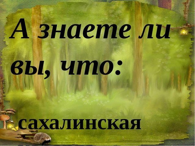 А знаете ли вы, что:  сахалинская кабарга — самая маленькая в семействе; ос...